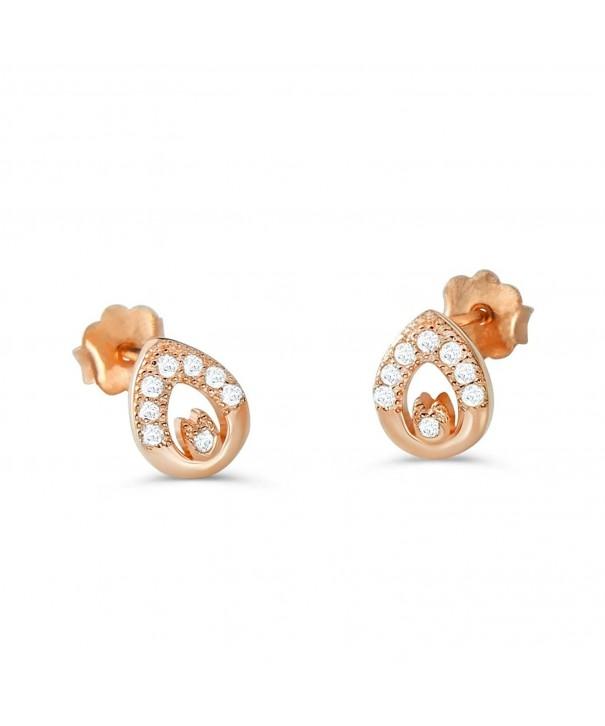 PRJewel Sterling Silver Exquisite Earrings