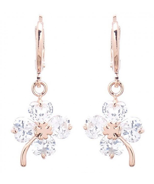 DaisyJewel Charms Hypoallergenic Leverback Earrings
