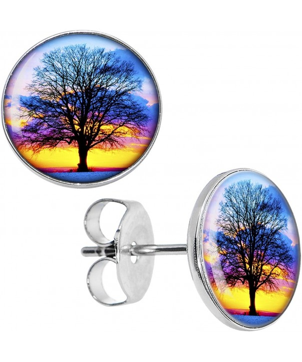 Body Candy Stainless Sunset Earrings